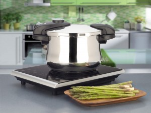 Induction Cooktop Reviews - Fagor Portable Induction Cooktop