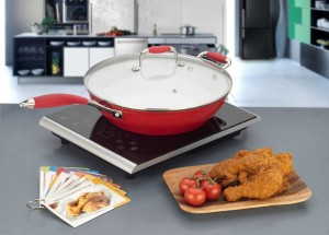 Induction cooktop Reviews - Fagor Portable Inductiion Cooktop d