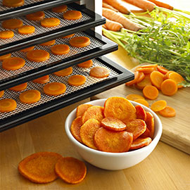 Tips on Buying a Good Food Dehydrator