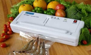 Top 10 Best Food Vacuum Sealers – Reviews And Buying Guide